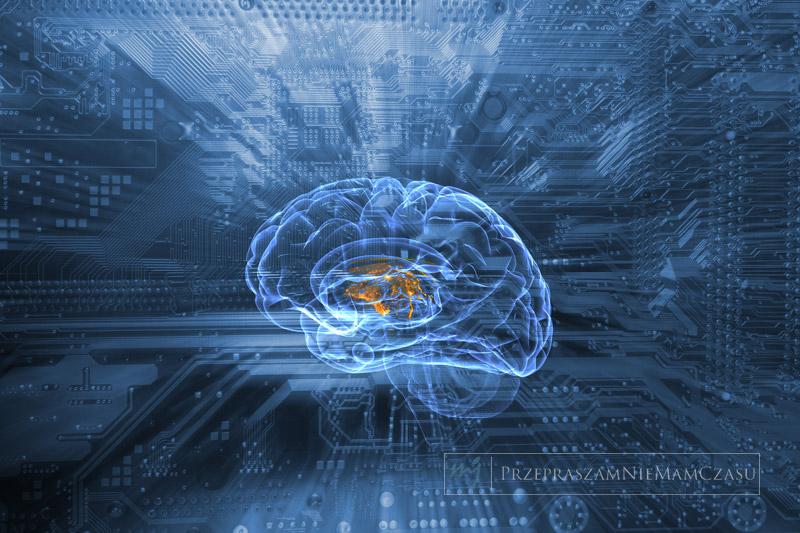 brainternet-featured