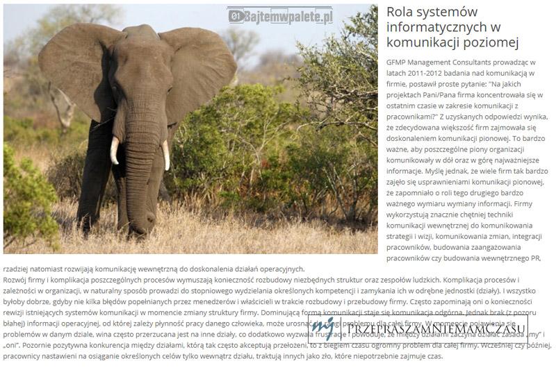 kiedy-slonie-milkna-w-buszu-featured